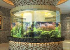 昆明专业清洗鱼缸,维修鱼缸,鱼缸维护,全城上门服务